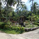 Bungalows view 2