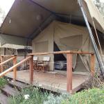 Our de-luxe tent.