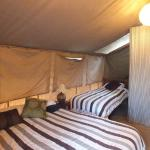 Beds in Garden Tent.