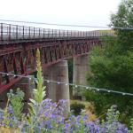 Manuherikia Bridge - so must history along the way!