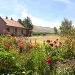 High quality B&B - Strathmore, Middlemarch