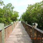 Boardwalk leading to restaurant