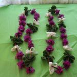 Foto de Cabañas Koro Nui