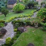Garten - Ausblick vom Zimmer