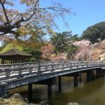 Πάρκο Nara