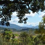 View from Mullumbimby towards Mt Warning