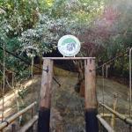 entrance of the elephant torture center...