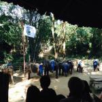 chained up elephants for your entertainment!! ugh.