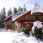Photo of Hotel Polovnik