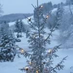 White Christmas with live music and singing