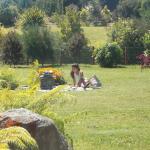 Areas verdes cabañas