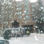 dia de neve