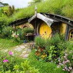 Cruise Tours to Hobbiton And Rotorua