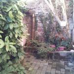 Angolo del cortile