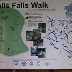 Halls Falls