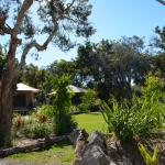 Set amongst the melaleuca trees on Moreton Island