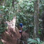 short walk to the waterfall