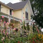 Charming Bed and Breakfast