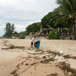 Пляж после шторма