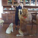 Mami and dogs Diesel and Gogo