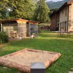 Azienda agricola Piccinelli