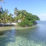 l île