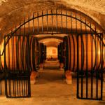 Wine in Provence Tours