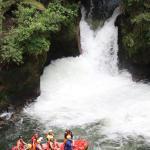 Kaituna Waterfall | Grade 5