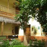 Foto del hall central del hostel