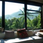 view from the panaromic picture windows.