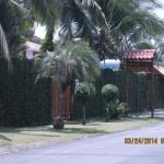 Photo of Cabinas Tropical