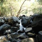 A small stream on the way to Dudhsagar.