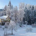 Wie im Märchen! Der Blick von unserem Balkon in die frisch Verschneite Landschaft/Garten