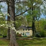 Dogwood Manor surrounded by century old trees on 4acre lot