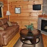 Whitetail Ridge Luxury Log Cabin ~ living room with gas log fireplace.