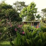 Das Häuschen im Garten, wo wir gewohnt haben- etwas verdeckt