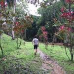walk to the farm