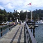 Port Browning Marina.