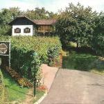 Izletniška kmetija Vinarium