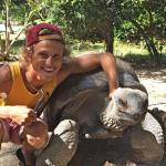 Interaction with the Giant Tortoises