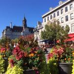 Located in the heart of Old Montreal.. my favorite neighborhood