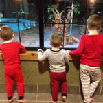 The kids watching the life guards play hide & seek after hours! :)