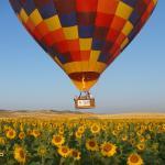 El globo sobrevolando los campos de girasoles de Sevilla