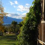 View of Lake Hawea from Main House