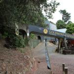 Gold mine experience entrance