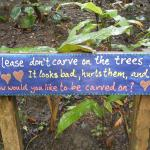 Sign on carving on trees!