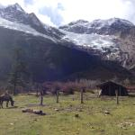 on the way to the lake from upper yubeng