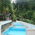 Le piscine nella foresta