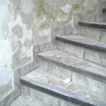 escalier sale et glissant