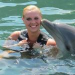 Dolphin Cove 2015